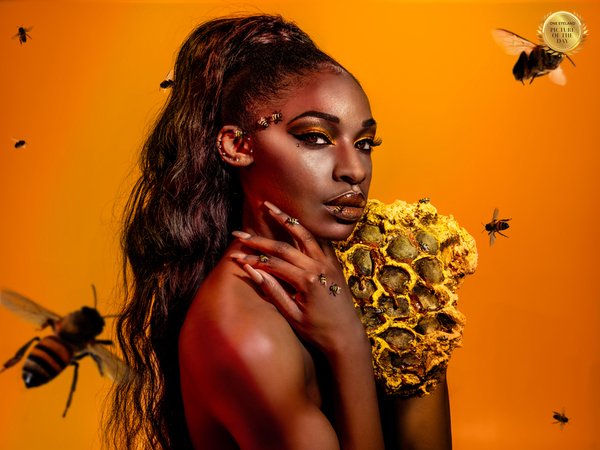 Photograph Krystel Marques Bee Insecta on One Eyeland