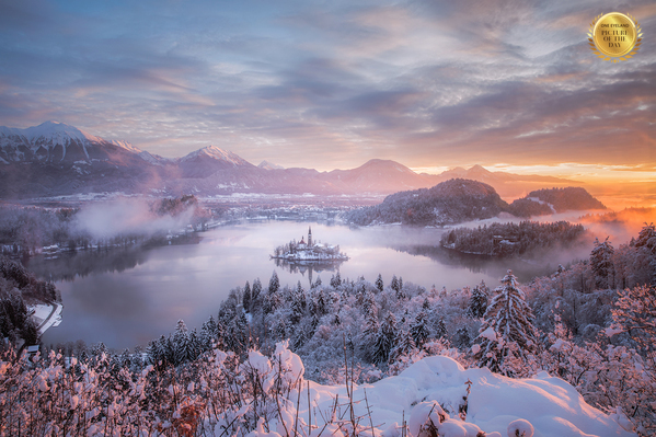 Photograph Jaka Ivancic Bled Lake Covered With Fresh Snow on One Eyeland