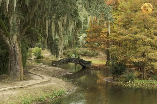 Photograph Eric Prine Autumn Bridge on One Eyeland