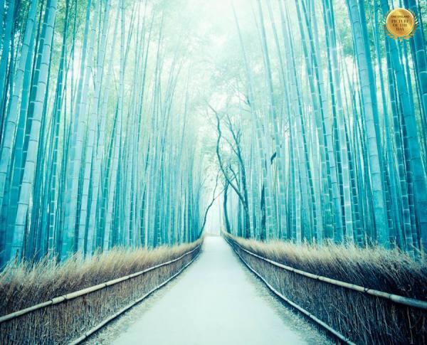 Photograph Yoshiyuki Ogawa La Strada on One Eyeland