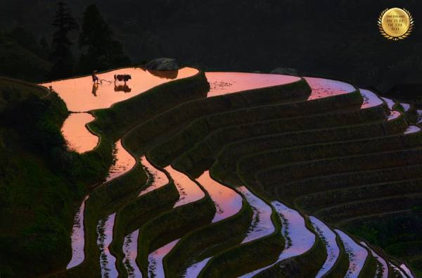 Photograph Thierry Bornier Sunset At Longji on One Eyeland