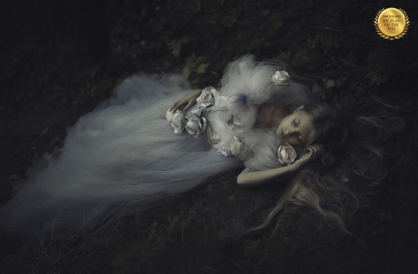 Photograph Monika Byczkowska Solitude on One Eyeland