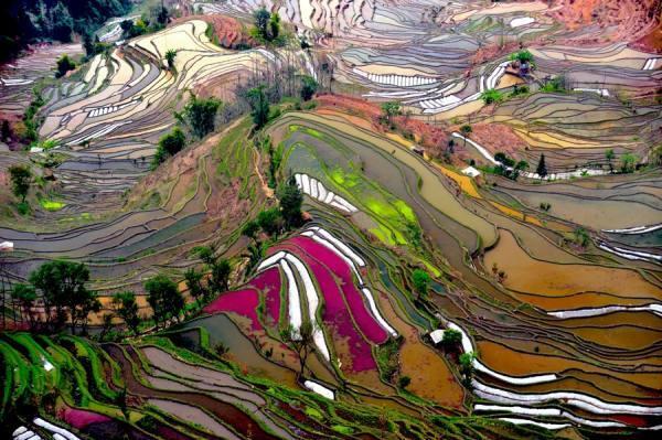 Photograph Thierry Bornier Yuanyang   China on One Eyeland
