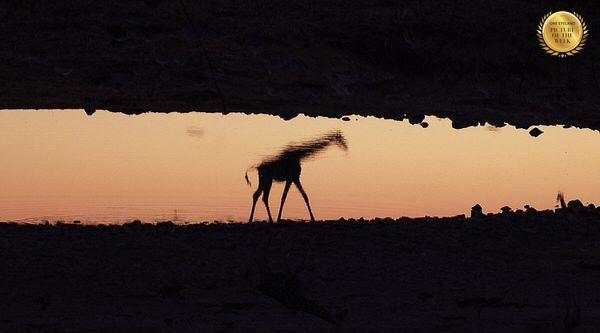 Photograph Luis Camara African Mirror on One Eyeland