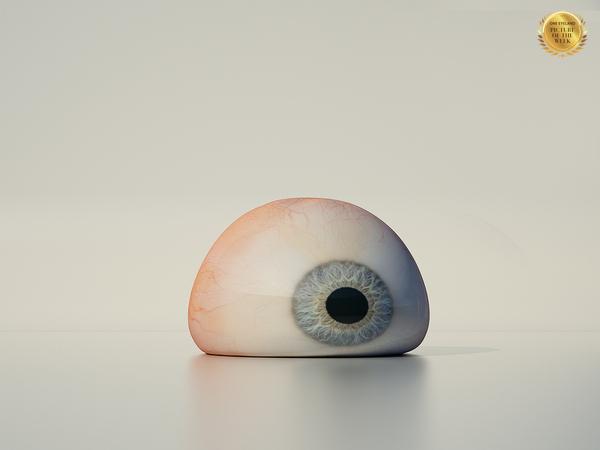 Photograph Luzzitelli Danieli Productions Eye on One Eyeland